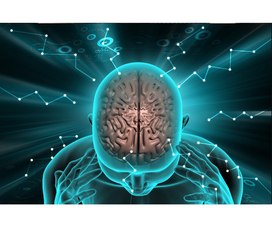 brainimpact